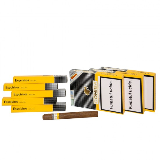 Trabucuri Cohiba Exquisitos (5)